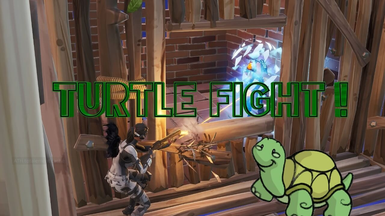TURTLE FIGHT!