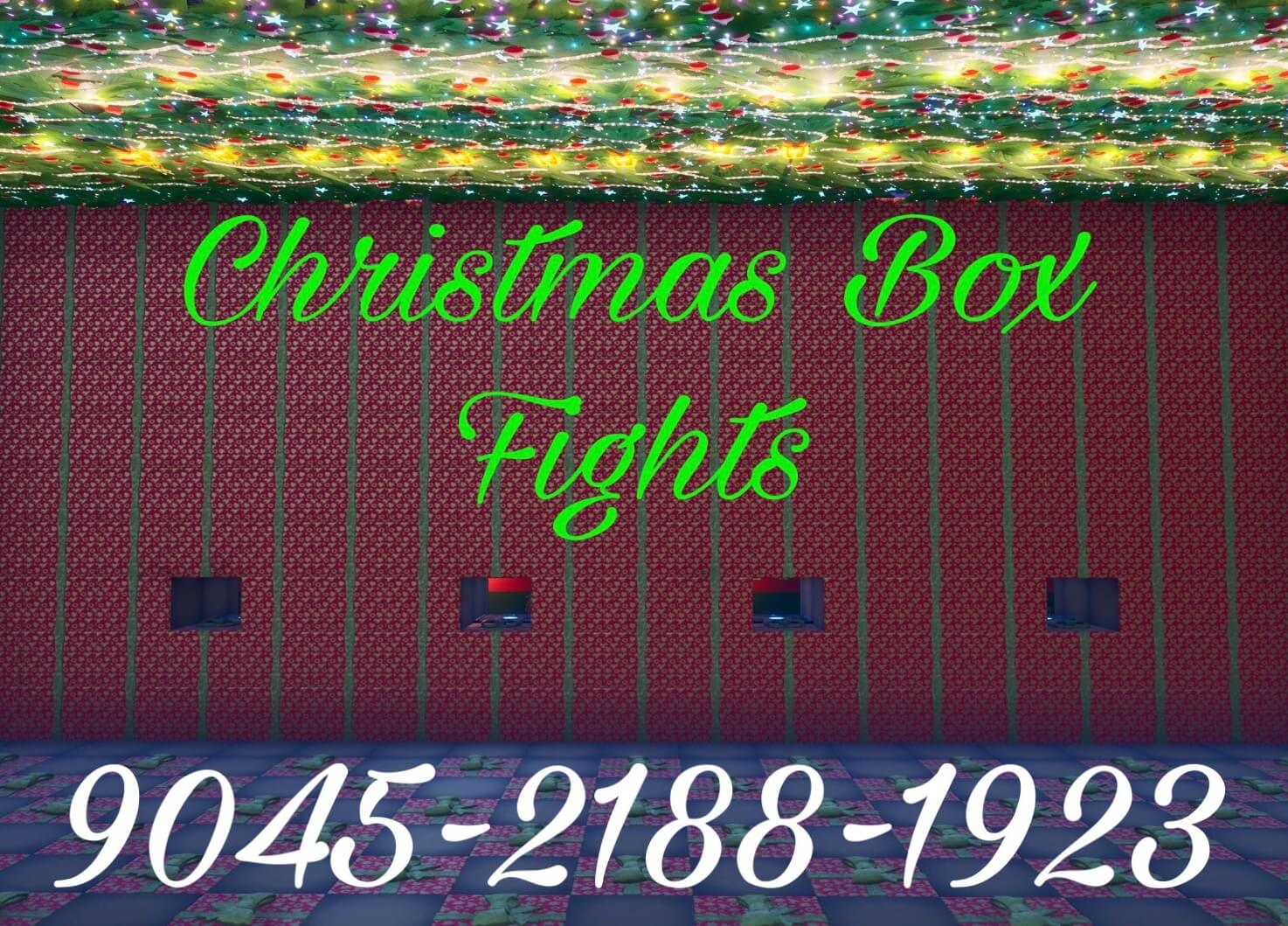 CHRISTMAS BOX FIGHTS